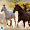 Konie w Galopie: Puzzle